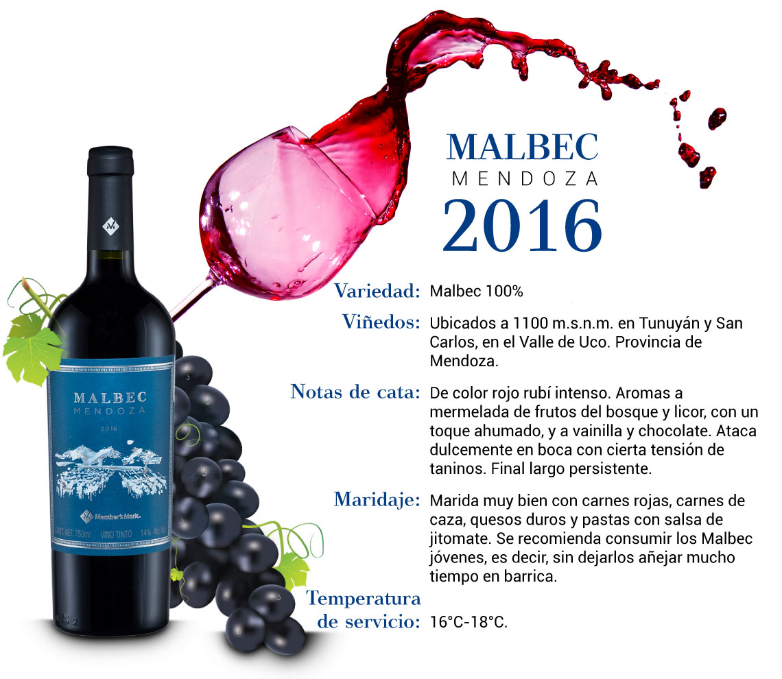 Malbec Vino Argentivo Especificaciones 3L