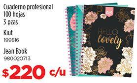 Cuaderno profesional