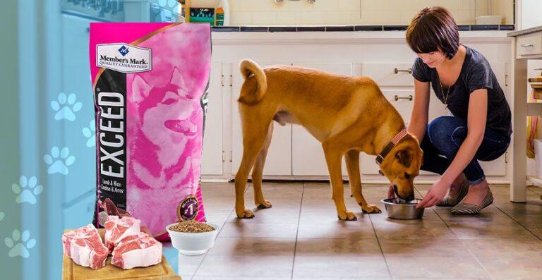 Exceed cordero y arroz , el alimento premium para tu perro