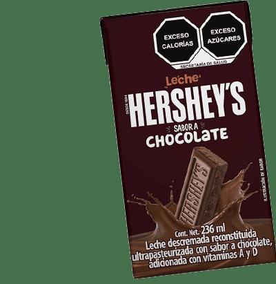 Leche Sabor Chocolate 2