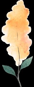 09 Natural Acuarela
