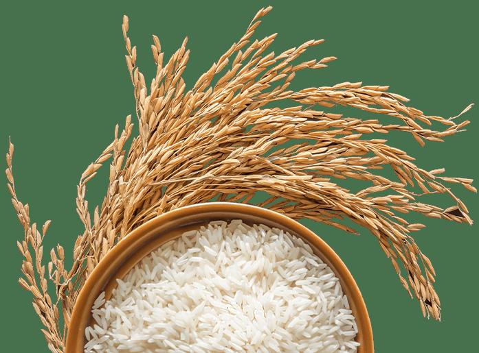 arroz en tazón
