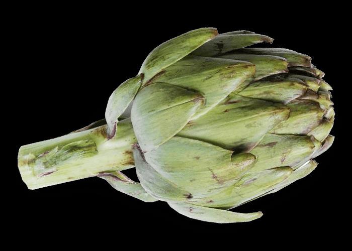 Alcachofas Nutribits Der