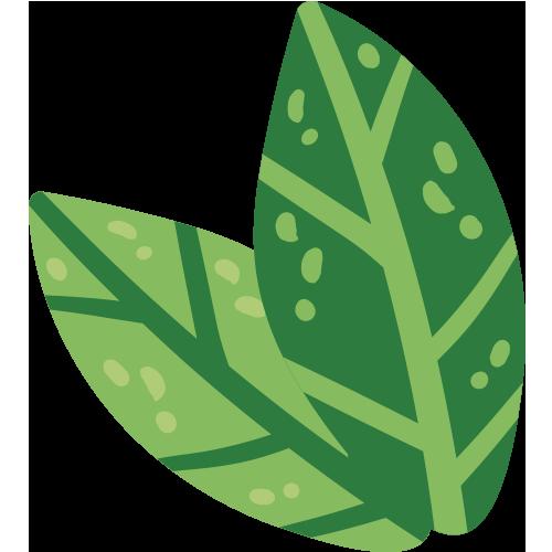 02 Sustentable Hoja 03