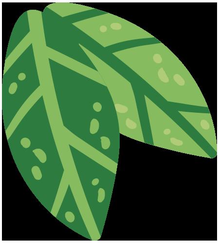 02 Sustentable Hoja 06