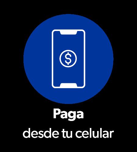 Scan Go 03 Paga