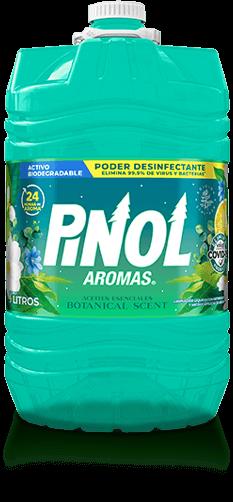 Pinol Aromas Nueve Litros
