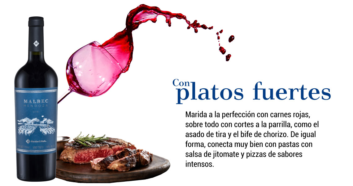 Malbec-Maridaje-Platos-Fuertes2