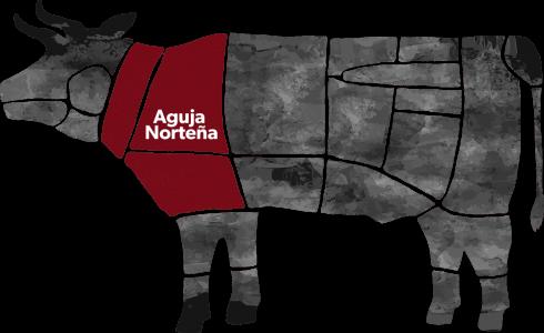 Aguja Norteña