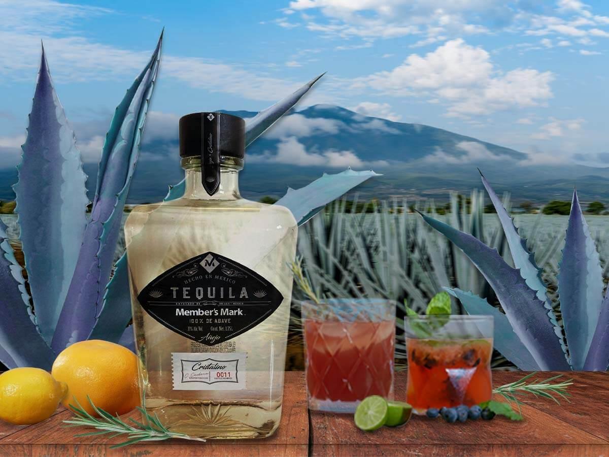 Tequila Members Mark Portada