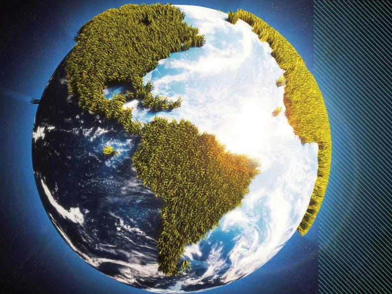 cuidamos del Medio ambiente